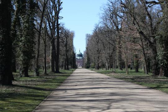 V královském parku_001